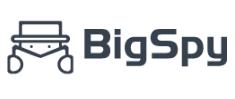 bigspy group buy